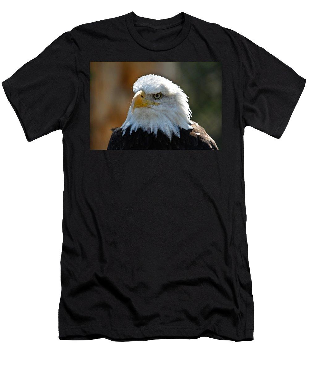 Bald Eagle Men's T-Shirt (Athletic Fit) featuring the photograph Bald Eagle Pose by Steve McKinzie