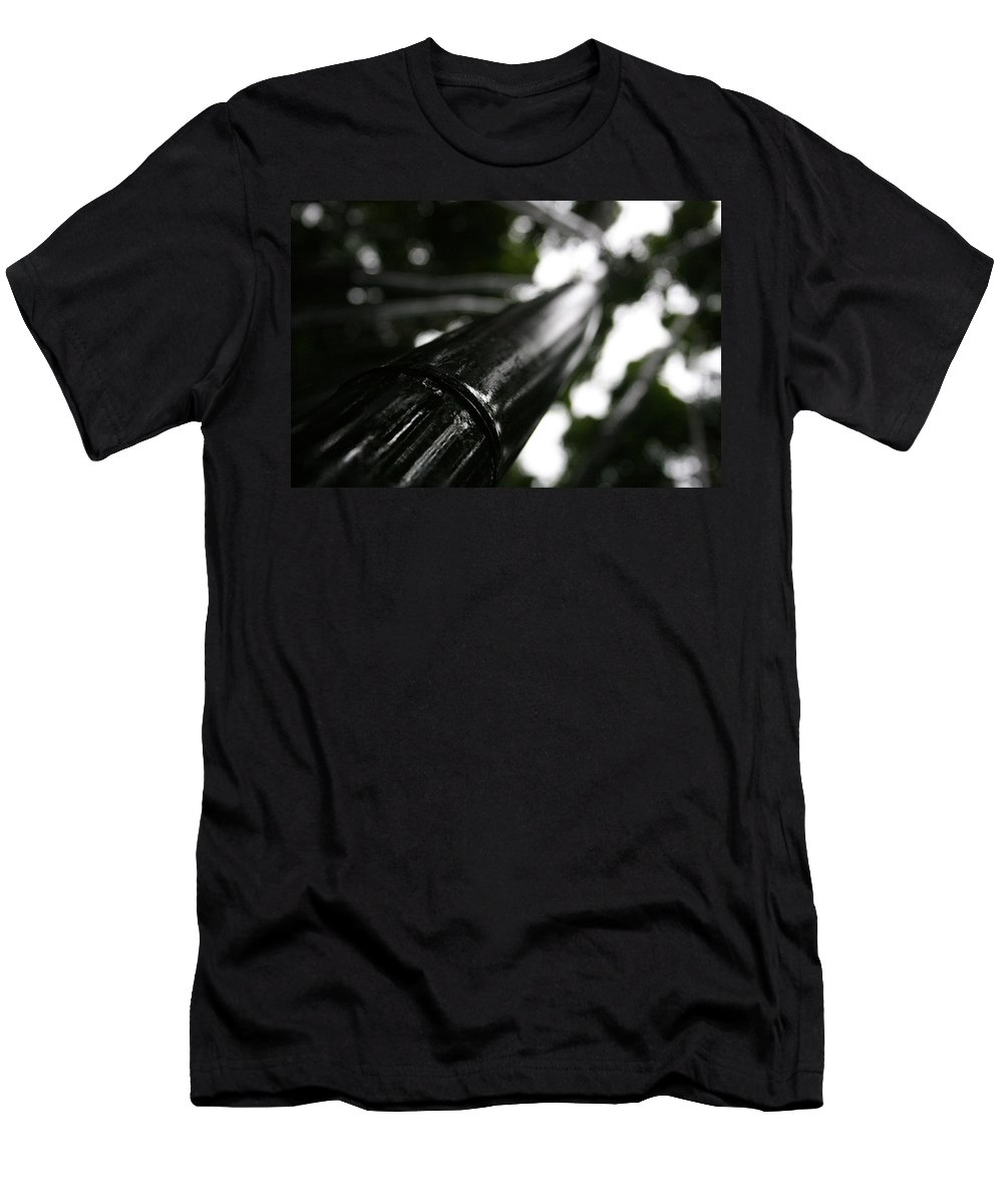 Bamboo Skies Men's T-Shirt (Athletic Fit) featuring the photograph Bamboo Skies 7 by Jennifer Bright