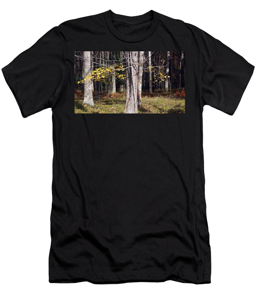 Tree Men's T-Shirt (Athletic Fit) featuring the photograph Bare by Crystal Harman