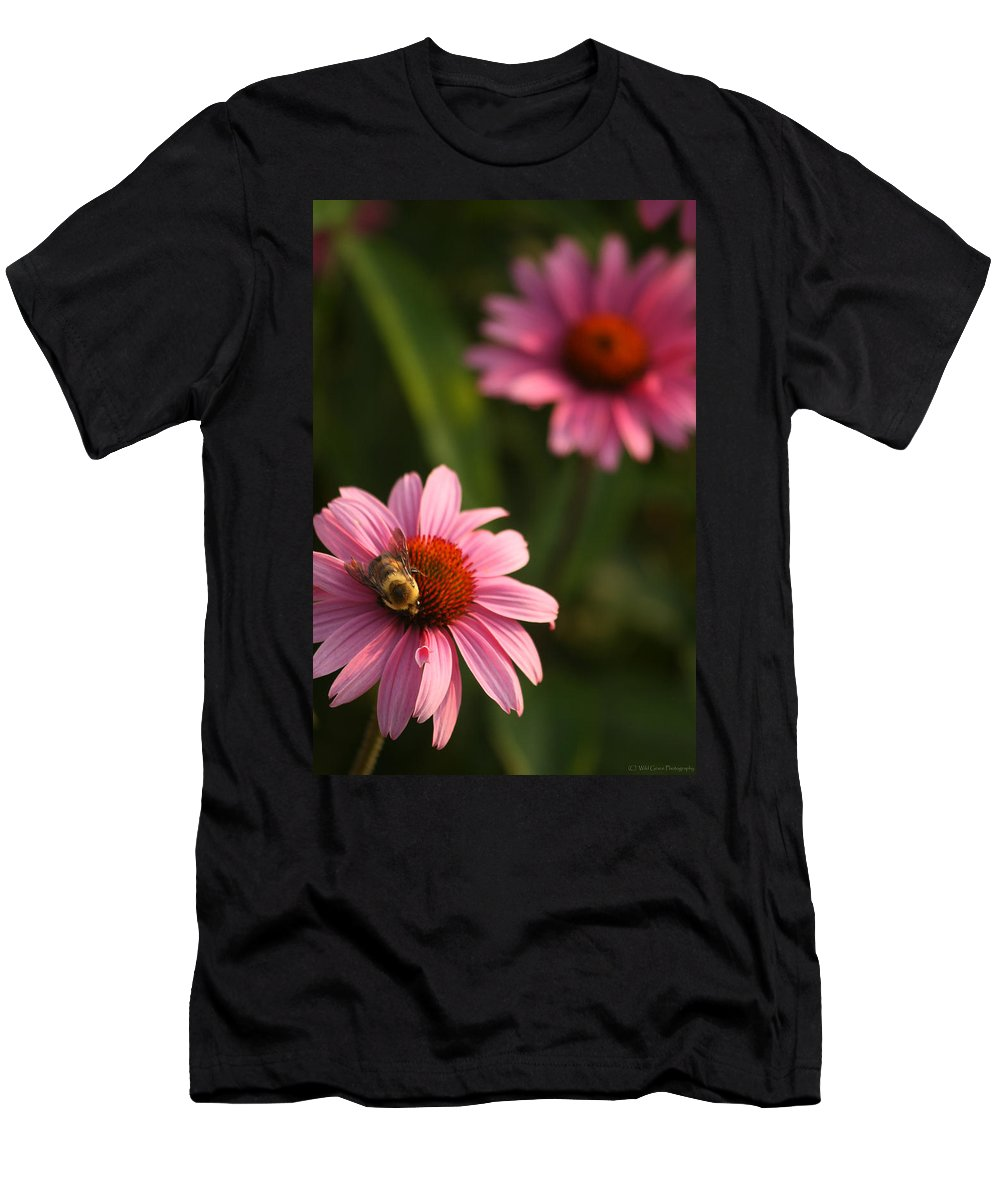 Bugs Men's T-Shirt (Athletic Fit) featuring the photograph Bee On Coneflower by Crystal Heitzman Renskers