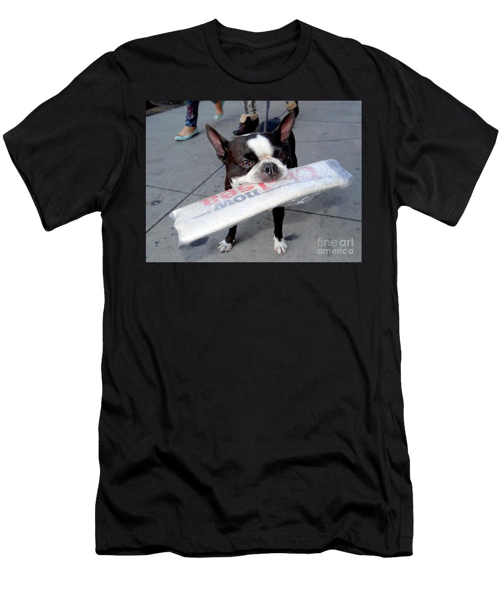 Dog Men's T-Shirt (Athletic Fit) featuring the photograph Betty The News Dog by Ed Weidman
