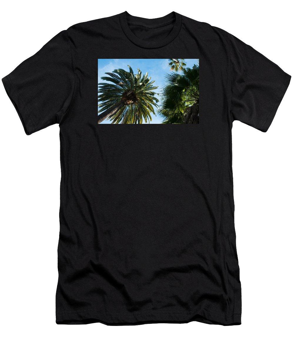 Beverly Hills Men's T-Shirt (Athletic Fit) featuring the photograph Beverly Palms by Lee Roth