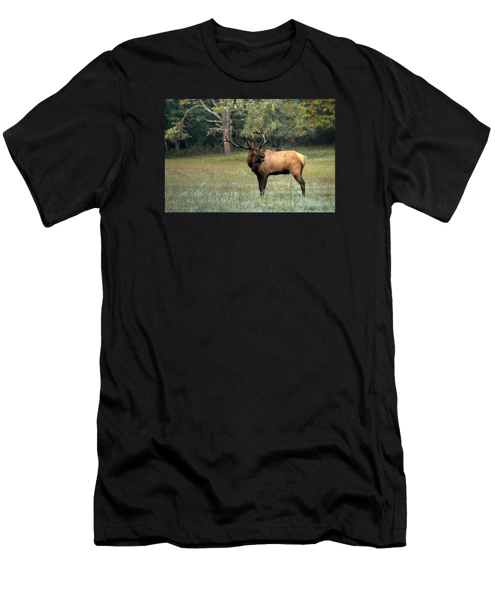 Carol R Montoya Men's T-Shirt (Athletic Fit) featuring the photograph Big Boy Number Sixty-seven Another Year Older by Carol Montoya