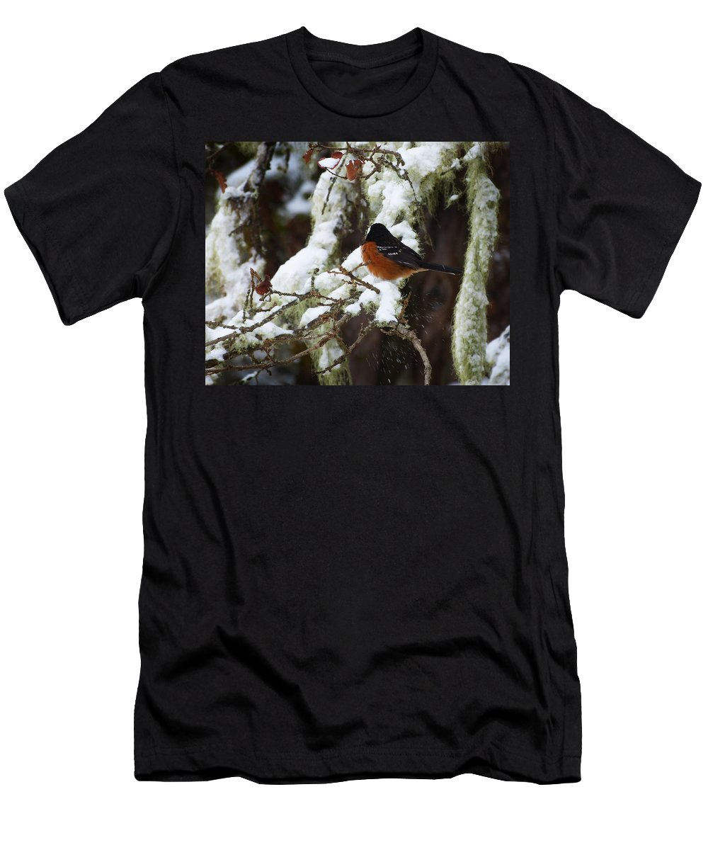Bird Men's T-Shirt (Athletic Fit) featuring the photograph Bird In Snow by Monique Morin Matson