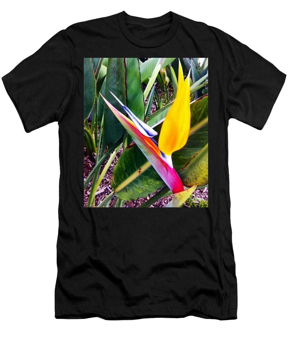 Flower Men's T-Shirt (Athletic Fit) featuring the photograph Bird Of Paradise by Susan Garren
