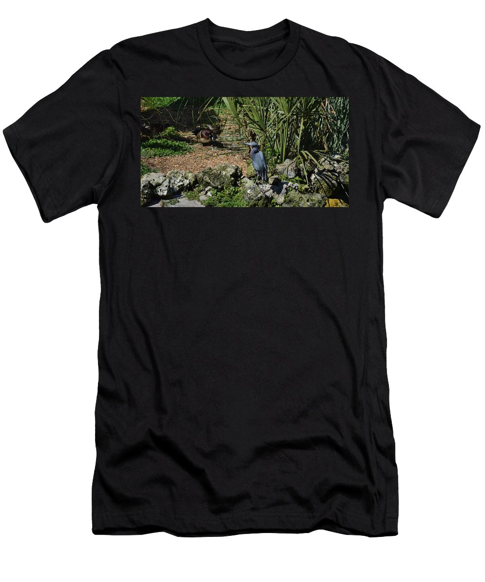 Florida Men's T-Shirt (Athletic Fit) featuring the photograph Birds In Florida by Linda Kerkau