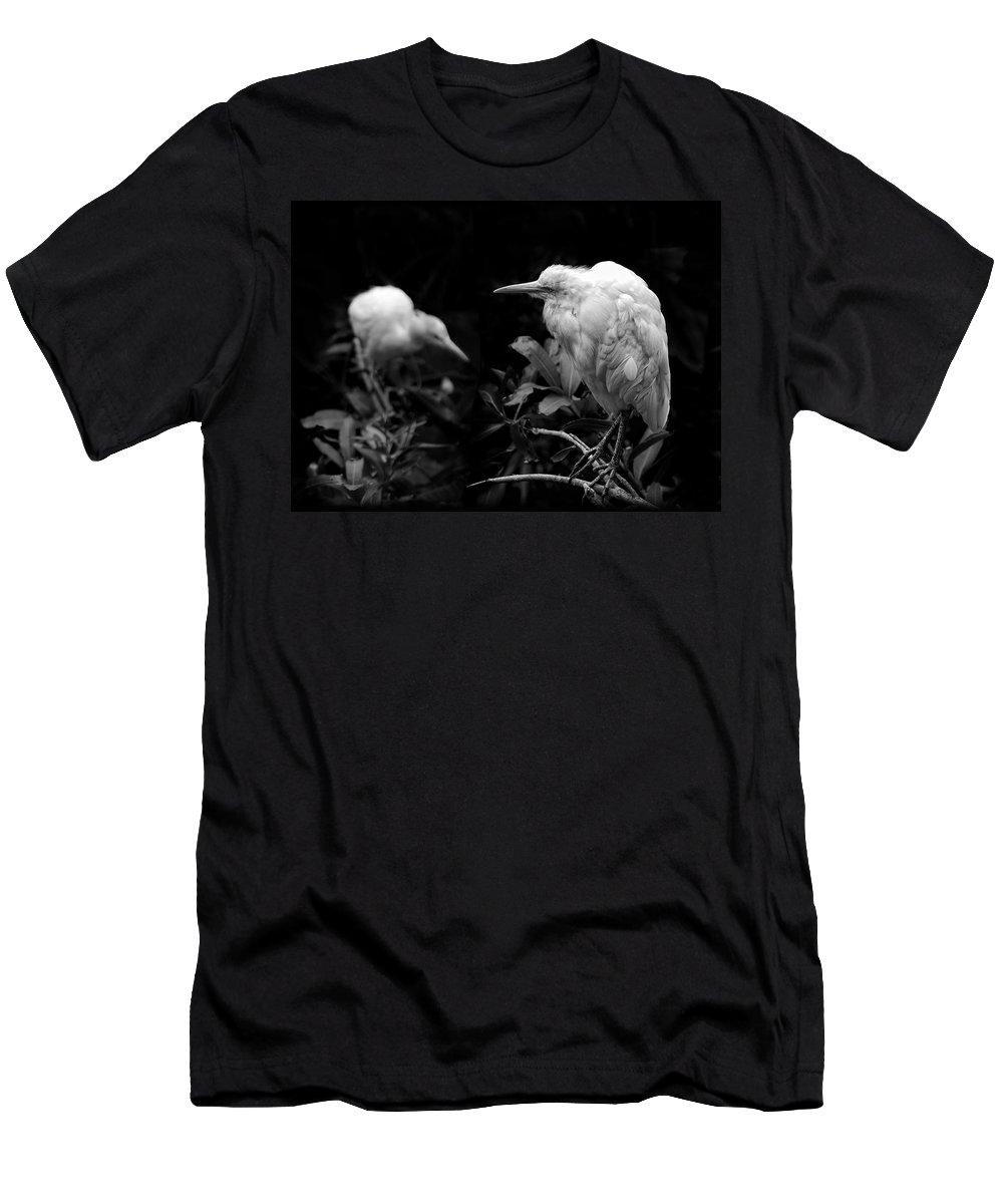 Birds Men's T-Shirt (Athletic Fit) featuring the photograph Birds Of A Feather by Wayne Sherriff