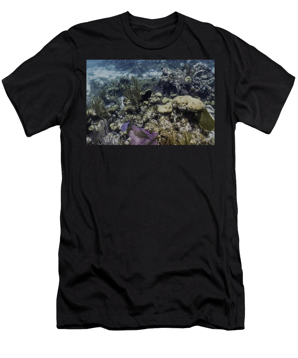 Fish Men's T-Shirt (Athletic Fit) featuring the photograph Black And Blue by Lynne Browne