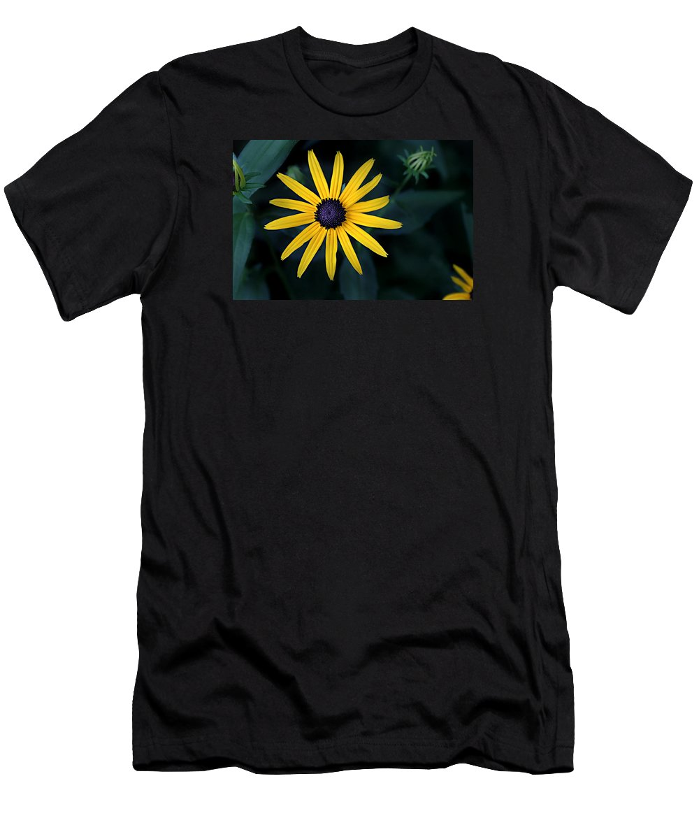 Asteraceae Men's T-Shirt (Athletic Fit) featuring the photograph Black-eyed Susan by William Tanneberger