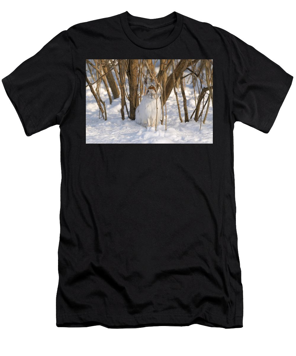 Winter Men's T-Shirt (Athletic Fit) featuring the photograph Blending In by Heather Pickard