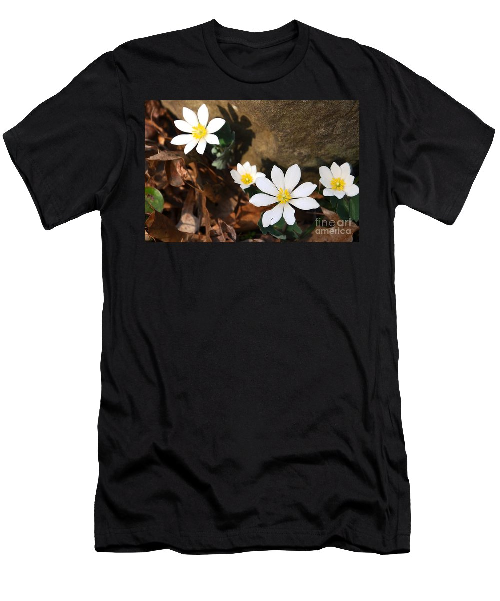 Flower Men's T-Shirt (Athletic Fit) featuring the photograph Bloodroot Beauty by Deanna Cagle