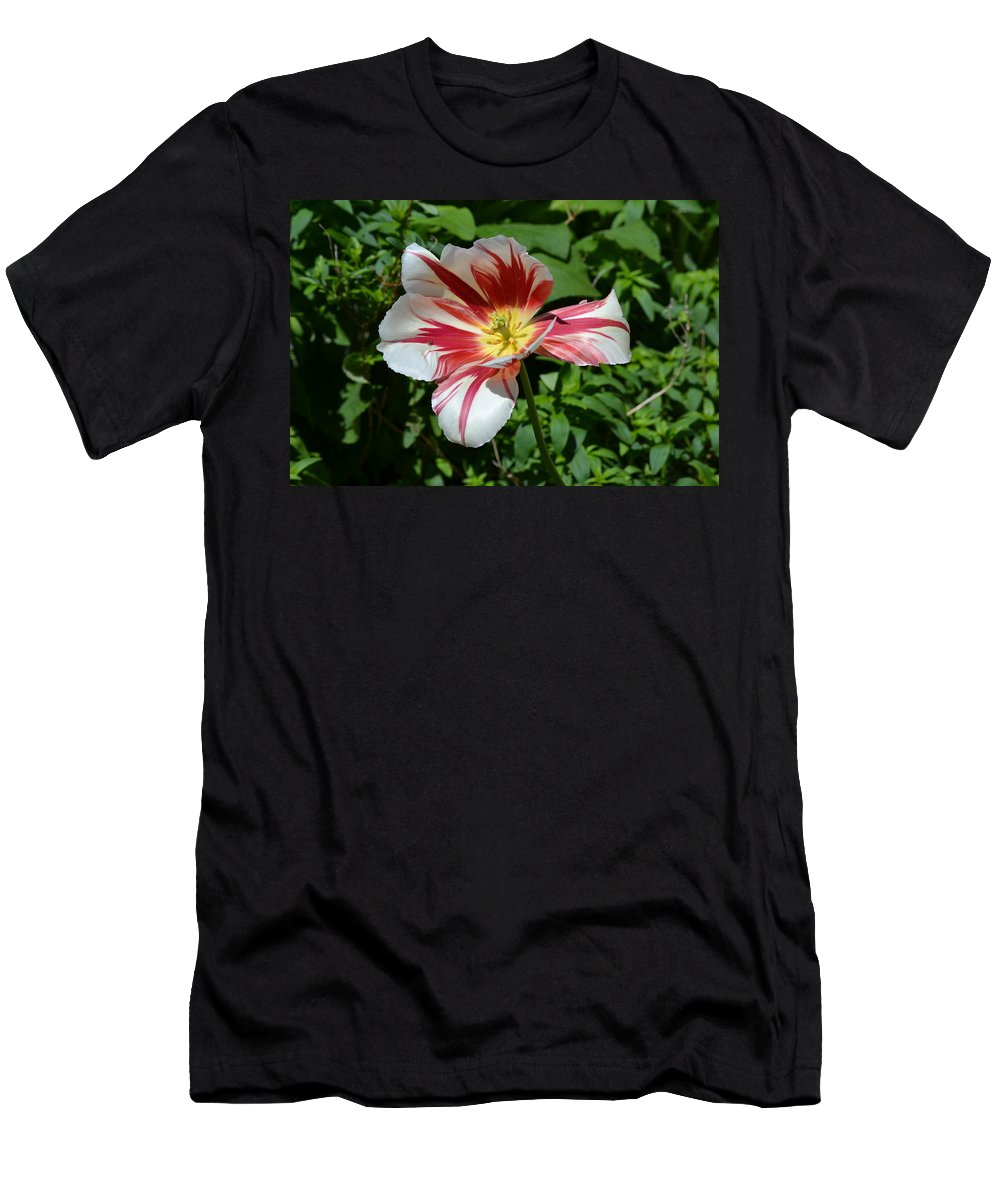 Flower Men's T-Shirt (Athletic Fit) featuring the photograph Bloom by Tara Potts