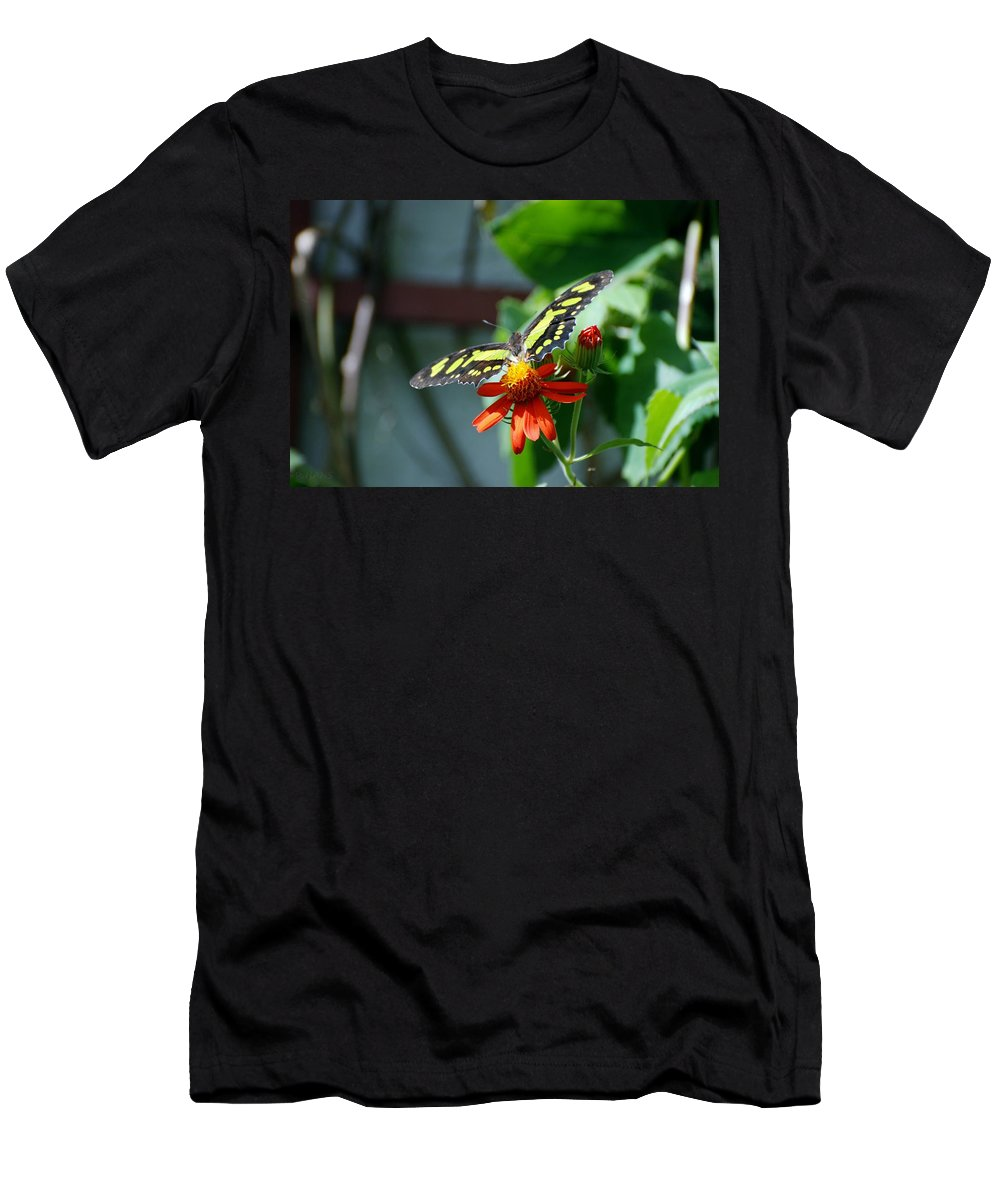 Lepidopterology Men's T-Shirt (Athletic Fit) featuring the photograph Blooms And Butterfly2 by Rob Hans