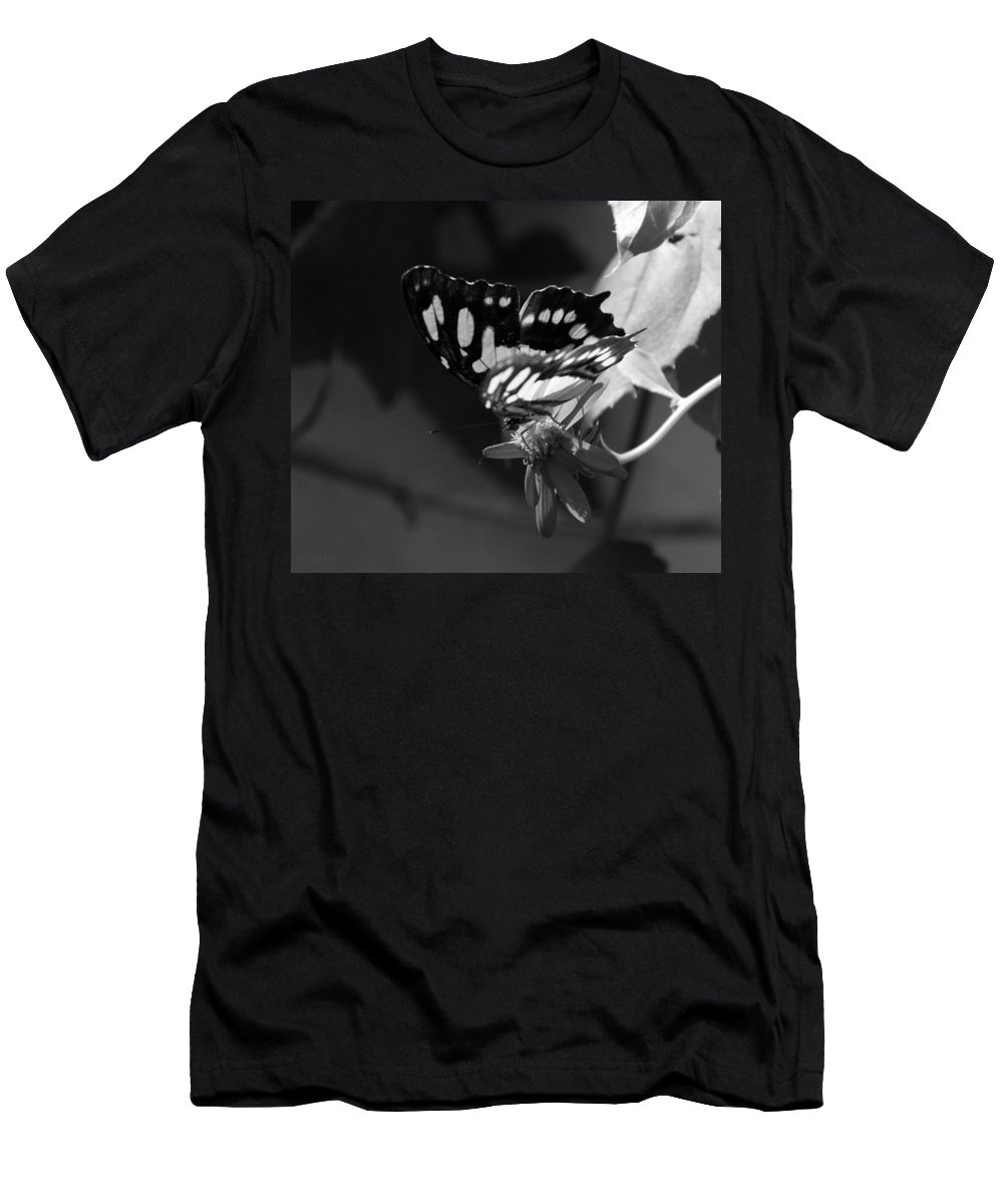 Lepidopterology Men's T-Shirt (Athletic Fit) featuring the photograph Blooms And Butterfly7 by Rob Hans
