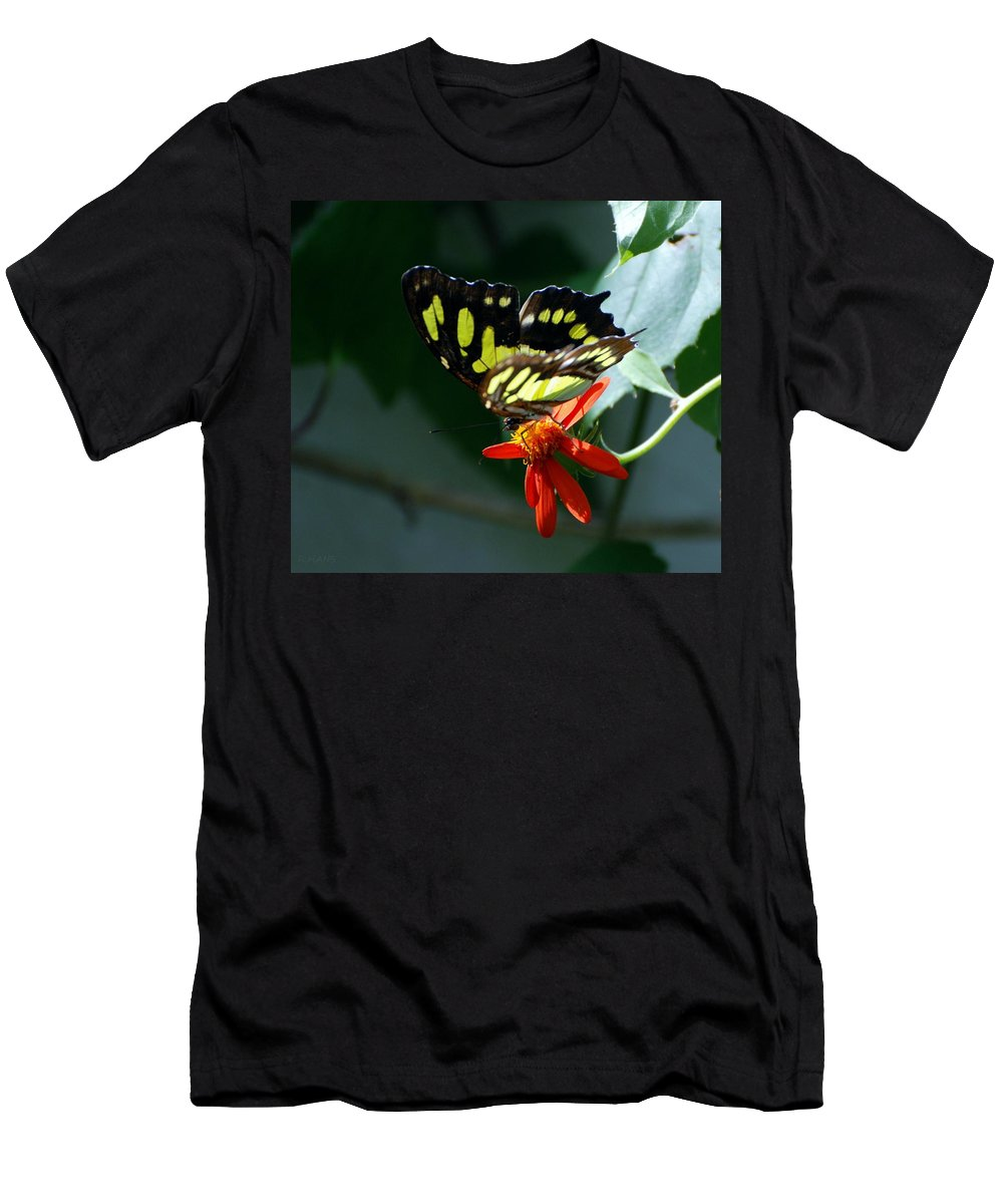 Lepidopterology Men's T-Shirt (Athletic Fit) featuring the photograph Blooms And Butterfly7c by Rob Hans