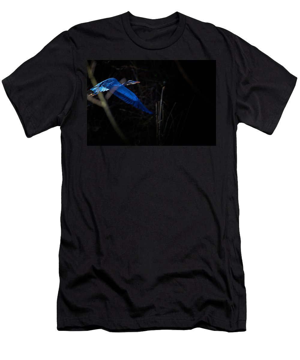 Blue Heron Men's T-Shirt (Athletic Fit) featuring the photograph Blue Blue Heron by Shelley Lewis