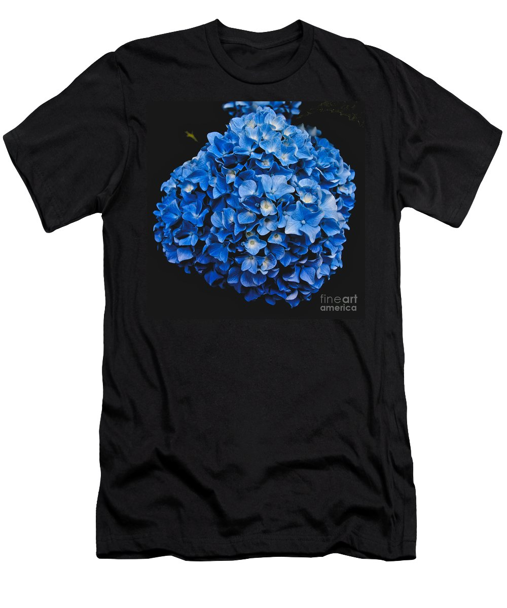Blue Hydrangea Men's T-Shirt (Athletic Fit) featuring the photograph Blue Hydrangea 1 by William Norton