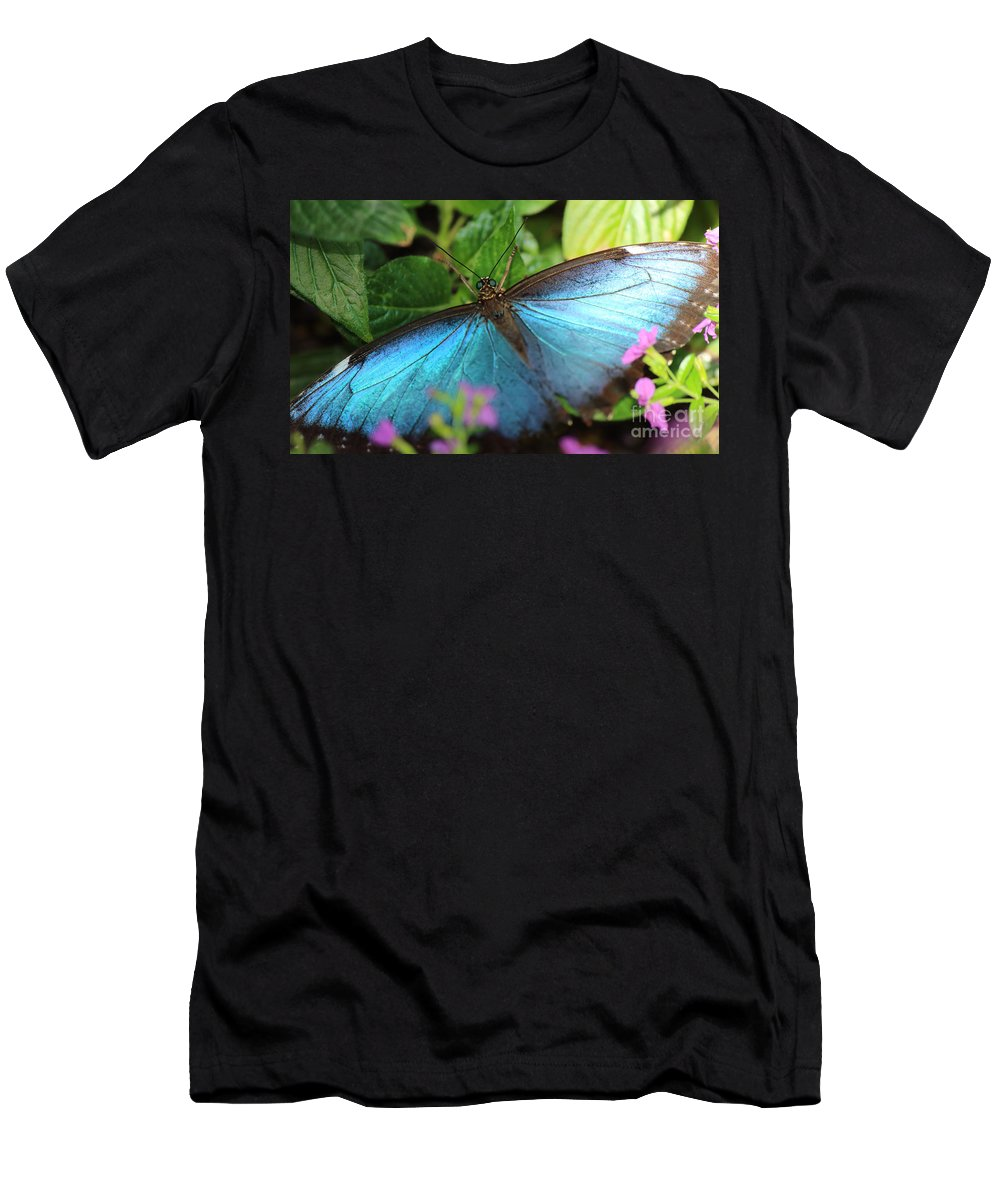 Photography Men's T-Shirt (Athletic Fit) featuring the photograph Blue Morpho by Jackie Farnsworth