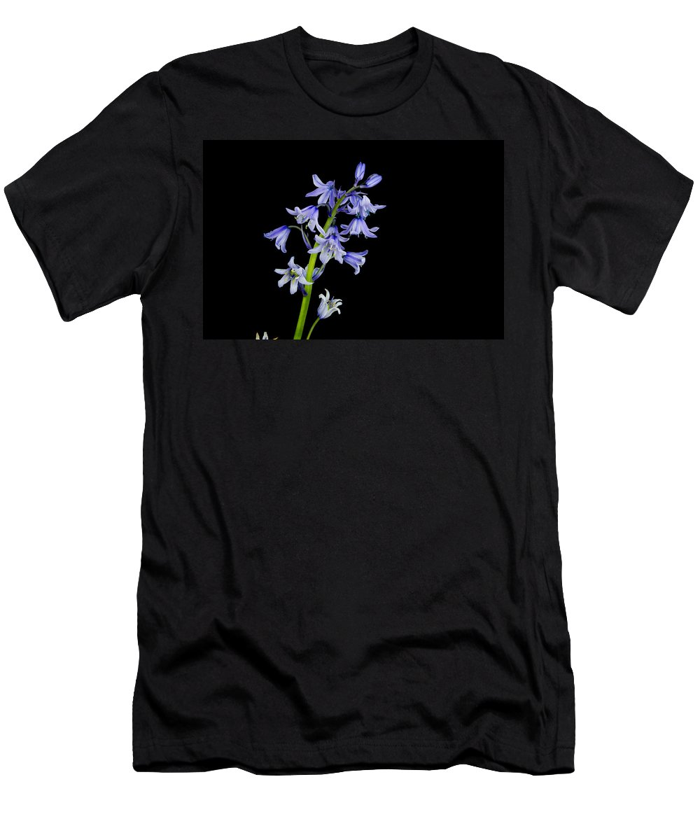Black Background Men's T-Shirt (Athletic Fit) featuring the photograph Bluebells by David Head