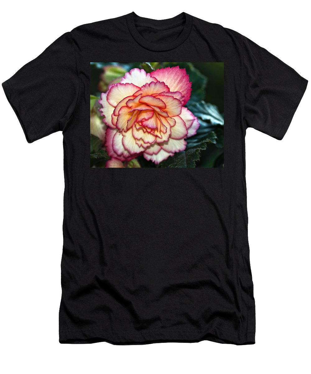 Begonia Men's T-Shirt (Athletic Fit) featuring the photograph Blushing by Steve Harrington