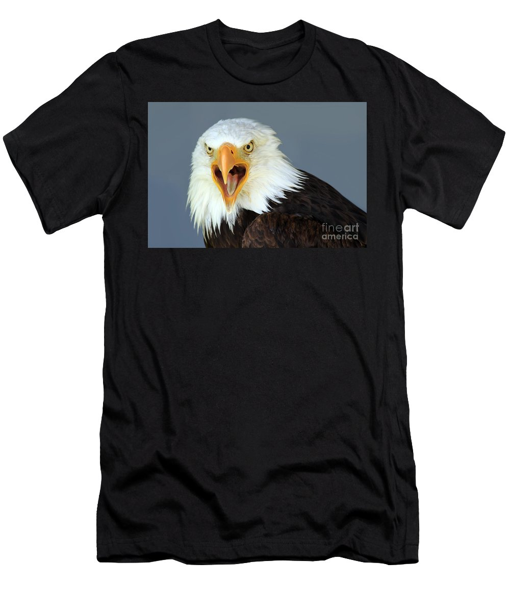Animal Men's T-Shirt (Athletic Fit) featuring the photograph Bald Eagle by Teresa Zieba