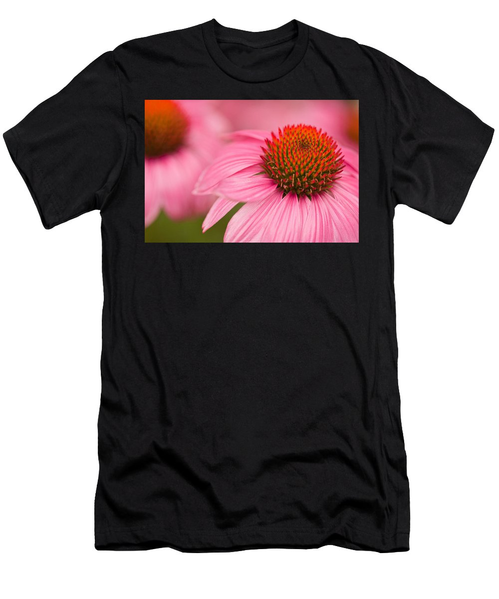 Coneflowers T-Shirt featuring the photograph Boldly Summer by Lindley Johnson