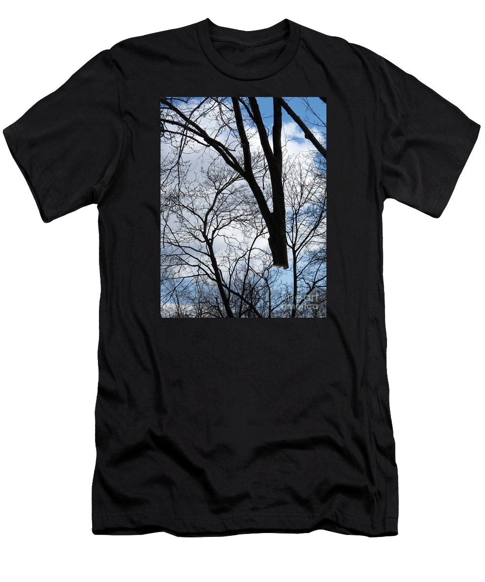 Tree Men's T-Shirt (Athletic Fit) featuring the photograph Bound For The Grinder by Ann Horn
