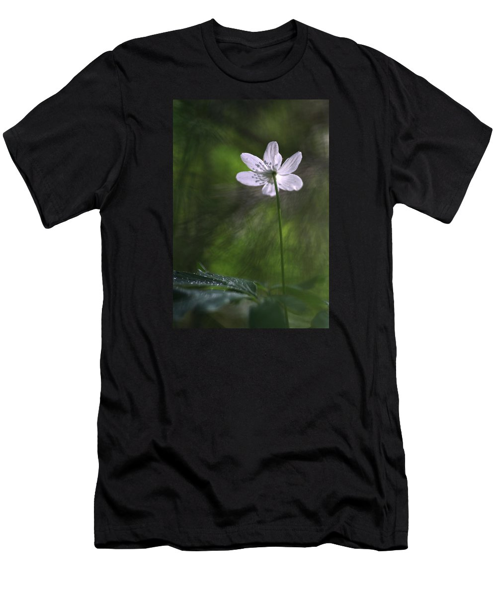 Photo Men's T-Shirt (Athletic Fit) featuring the photograph Bright Light Flower by Dreamland Media