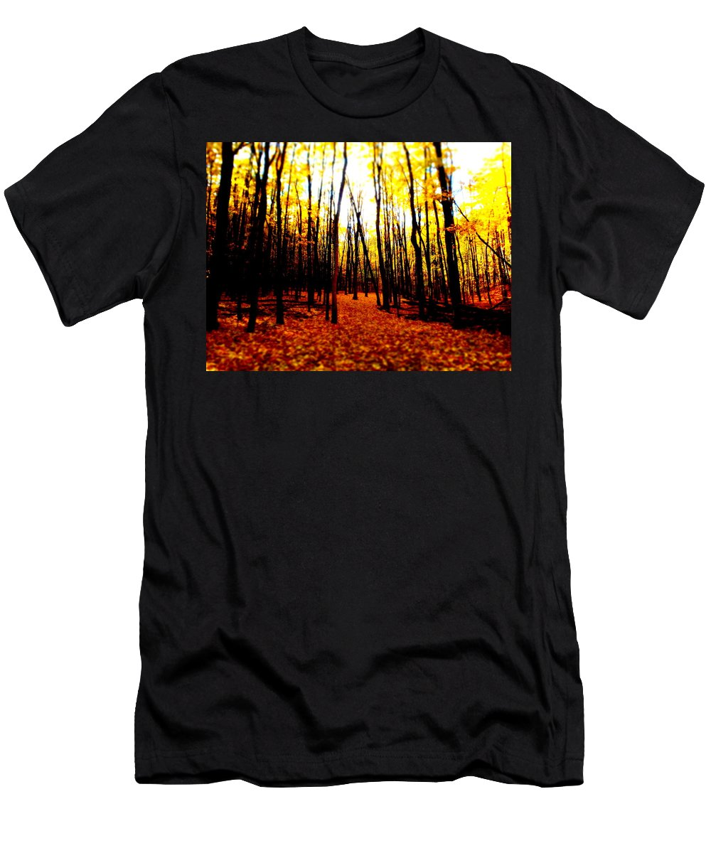 Fall Men's T-Shirt (Athletic Fit) featuring the photograph Bright Woods by Alicia Forton