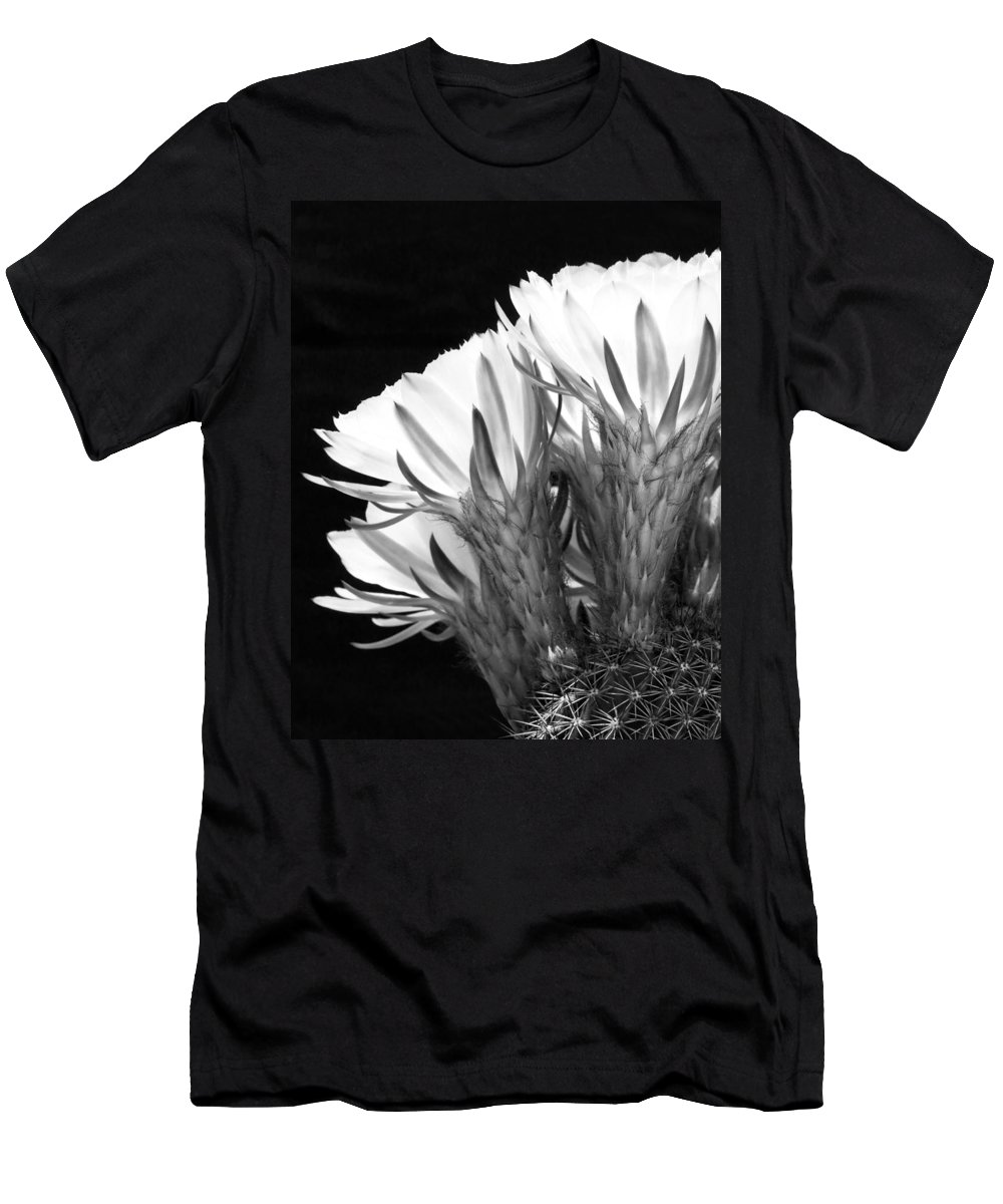 Cacti Men's T-Shirt (Athletic Fit) featuring the photograph Brilliant Blossoms Diptych Left by Kelley King