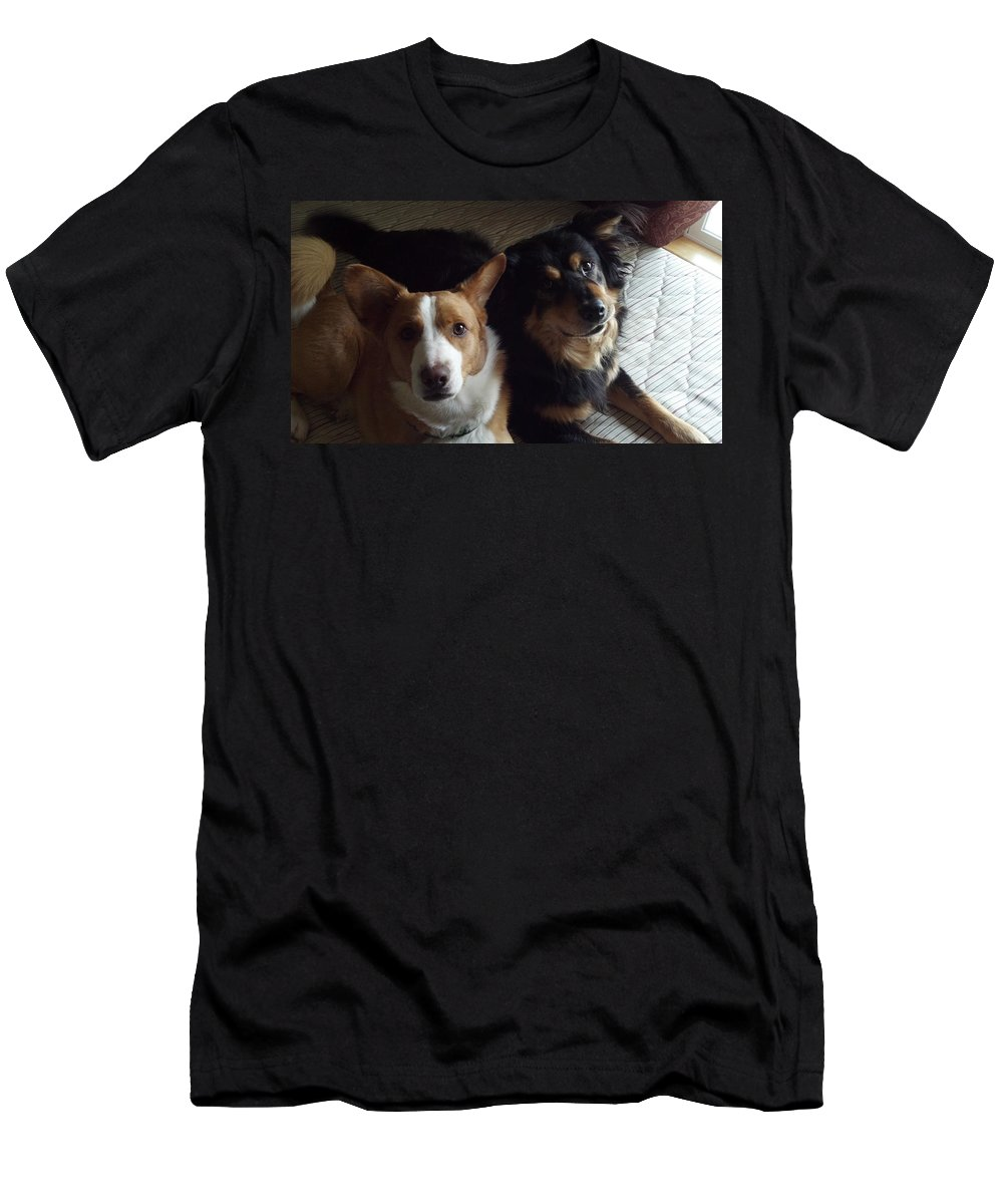 Mixed Breeds Men's T-Shirt (Athletic Fit) featuring the photograph Brothers by Lisa Wormell