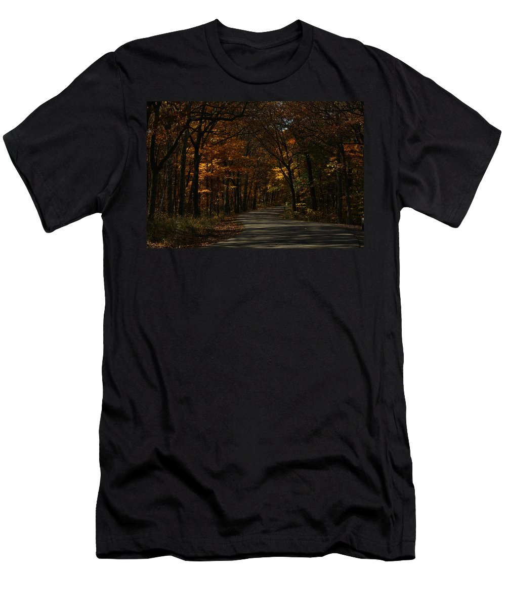 Brown County State Park Men's T-Shirt (Athletic Fit) featuring the photograph Brown County State Park by Dan McCafferty