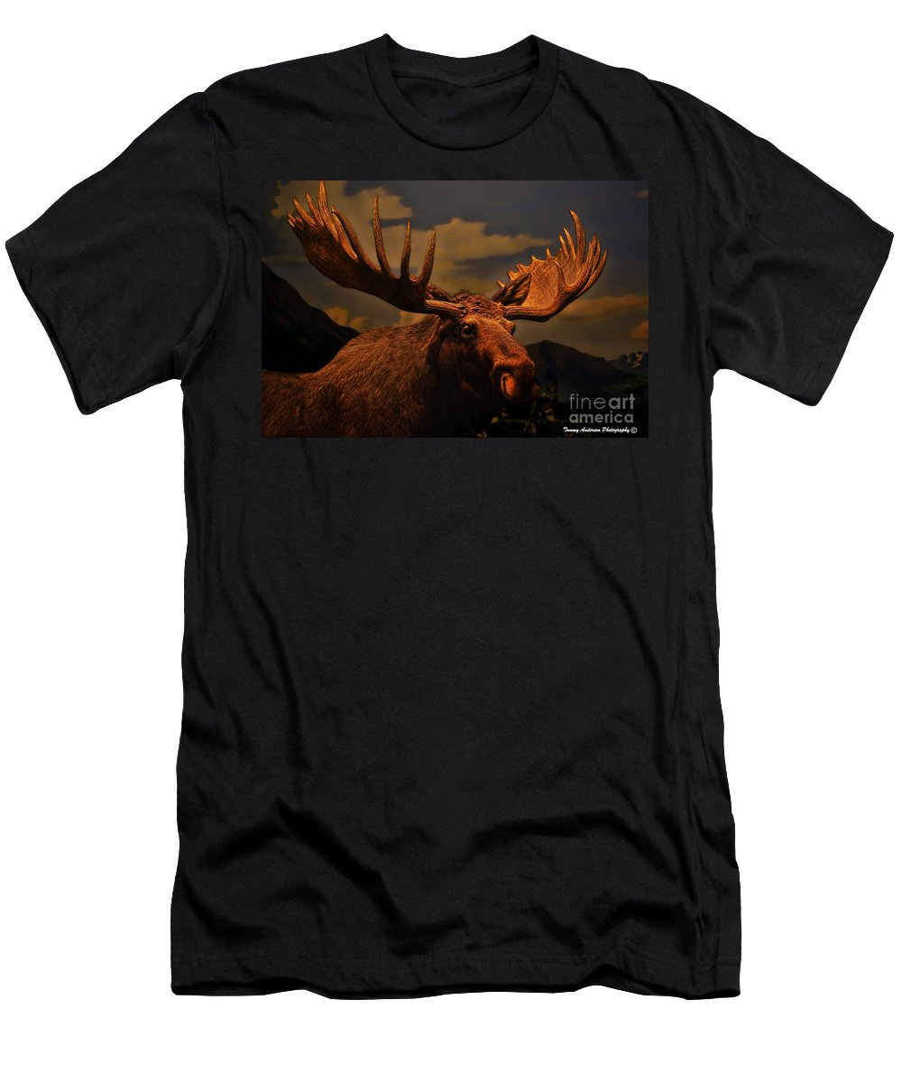Moose Men's T-Shirt (Athletic Fit) featuring the photograph Bull Moose by Tommy Anderson