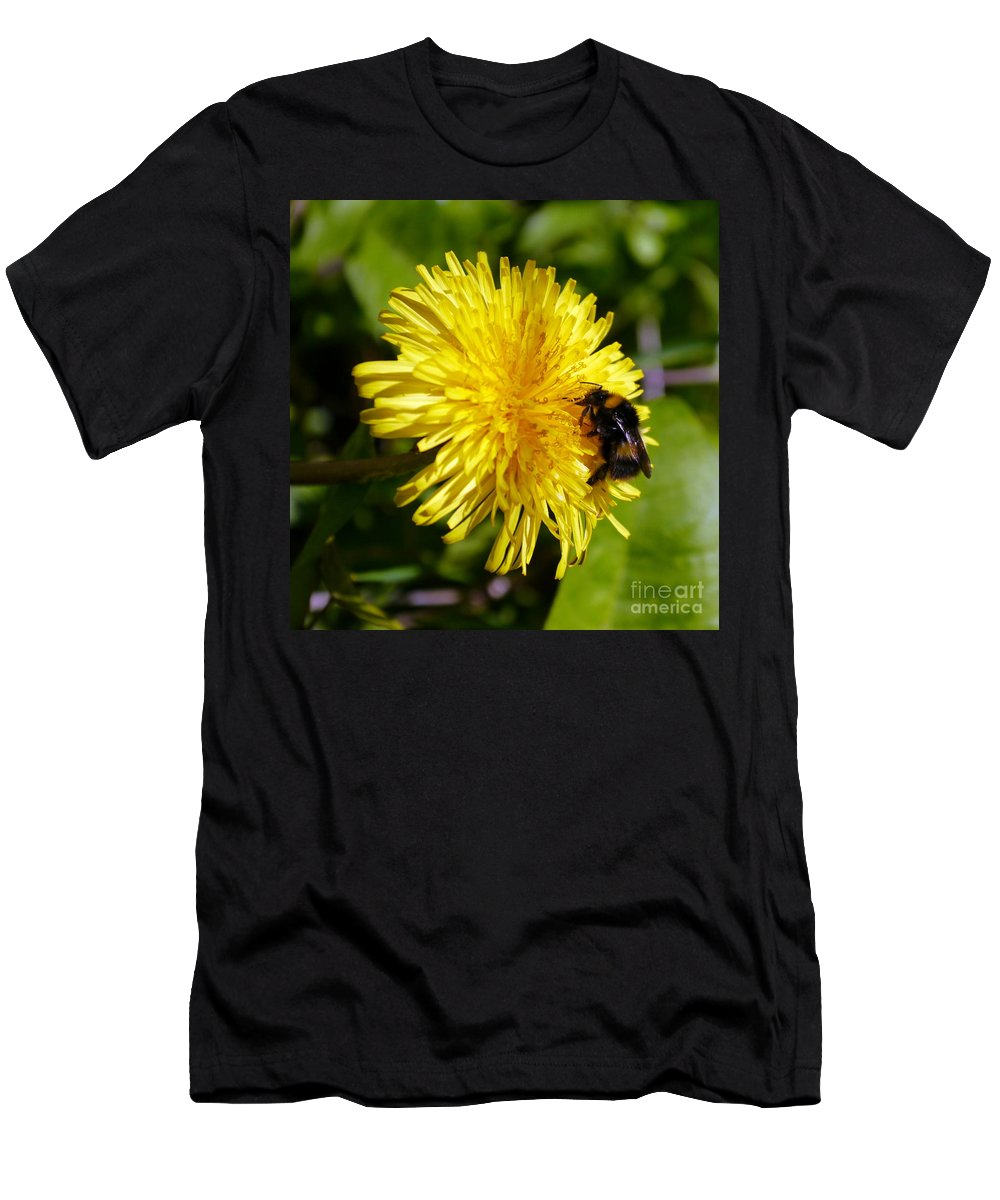 Bumble Bee Men's T-Shirt (Athletic Fit) featuring the photograph Bumble Bee And Dandelion by John Chatterley