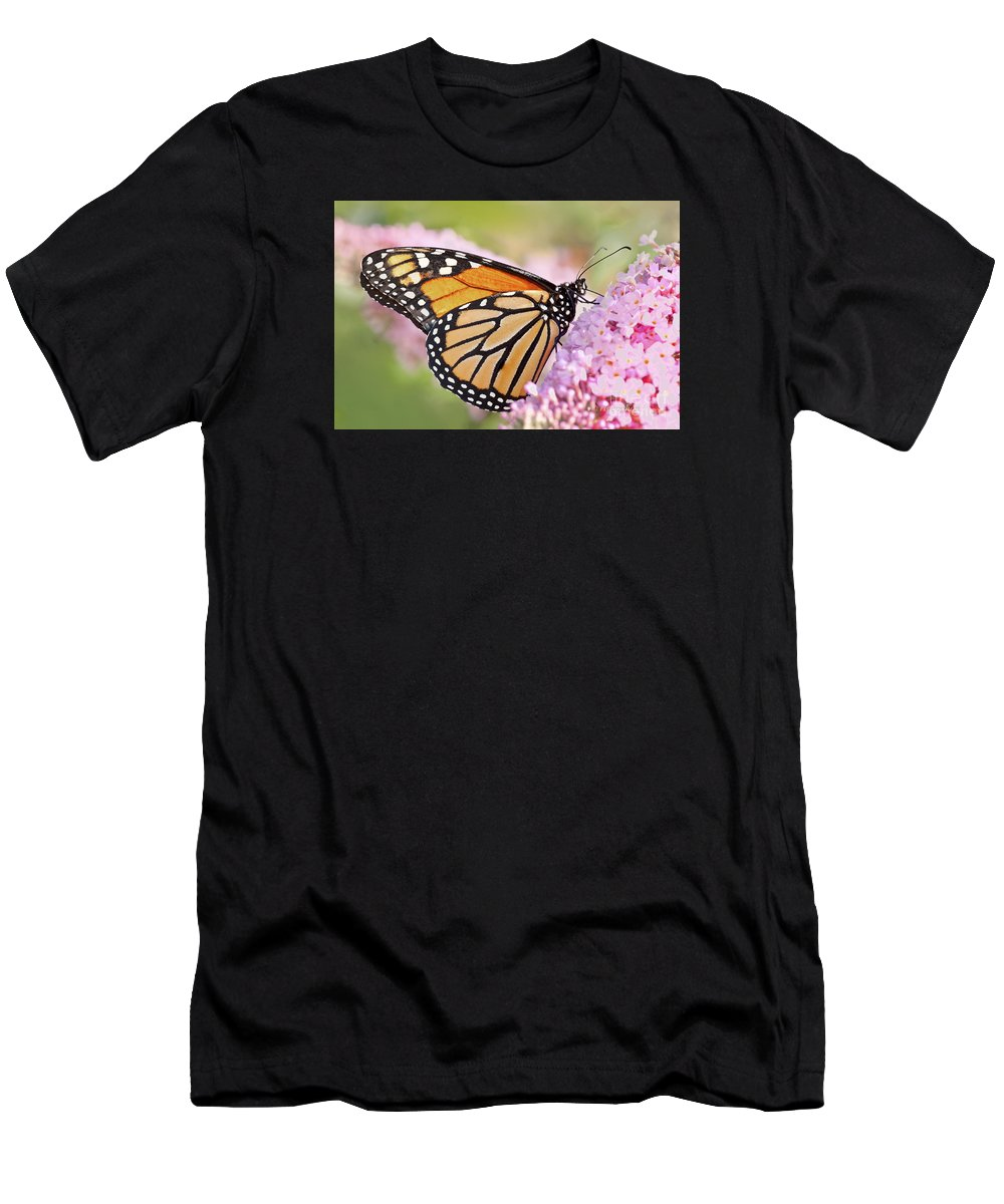 Butterfly Men's T-Shirt (Athletic Fit) featuring the photograph Butterfly Beauty-monarch II by Regina Geoghan