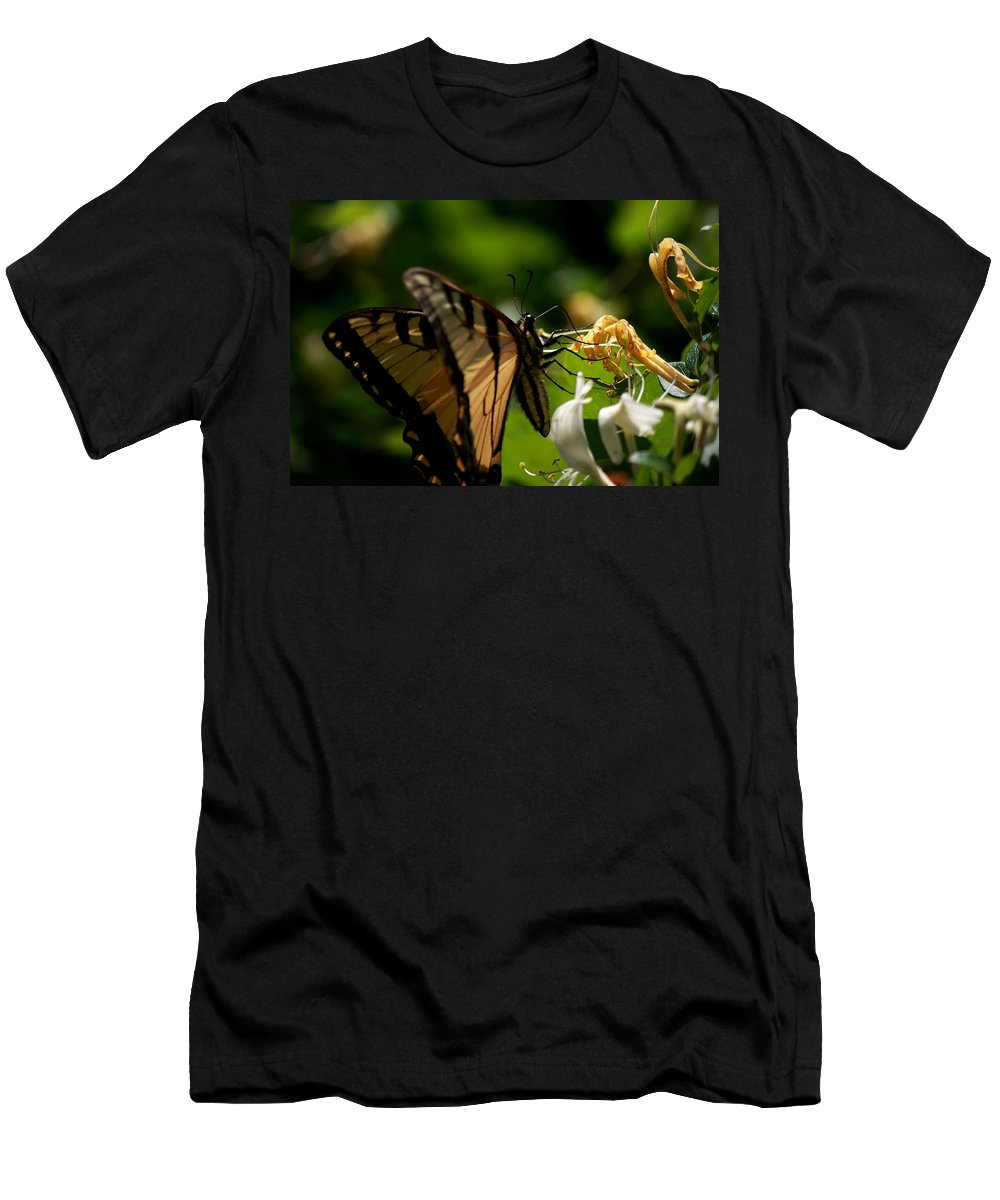 Butterfly Men's T-Shirt (Athletic Fit) featuring the photograph Butterfly by David Dufresne