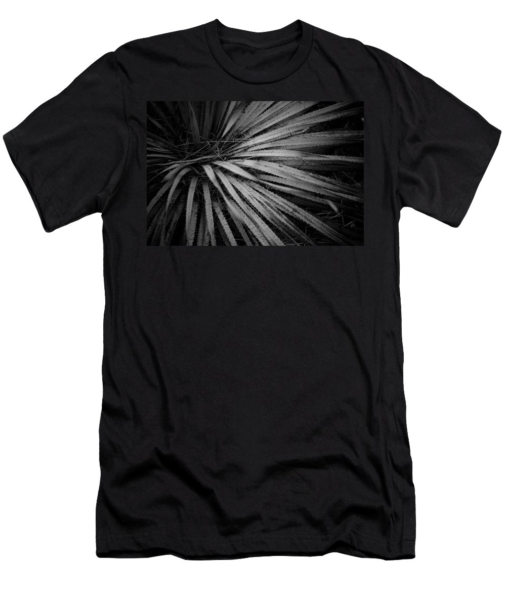 Botanicals Men's T-Shirt (Athletic Fit) featuring the photograph Cactus 5250 by Timothy Bischoff