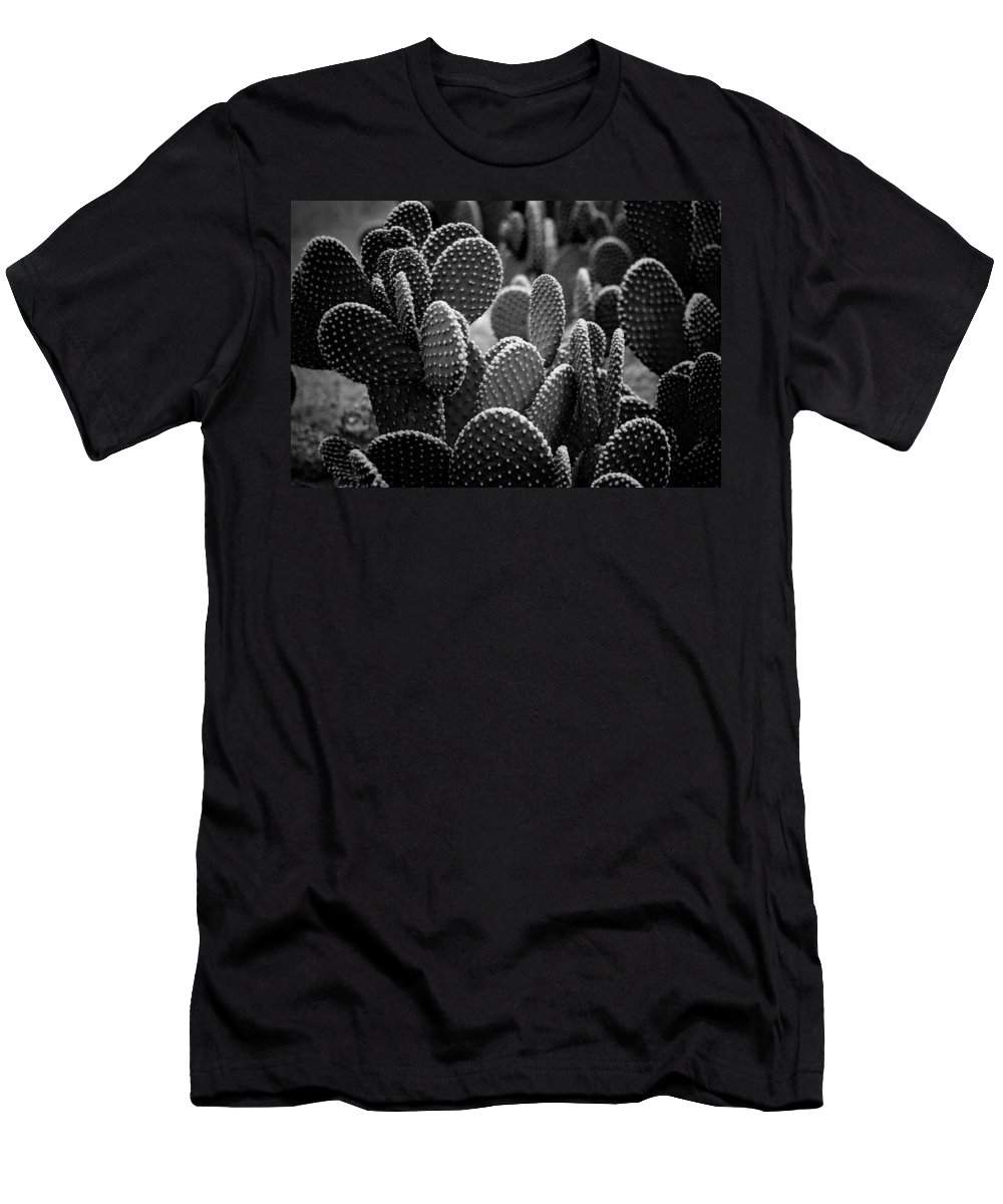 Botanicals Men's T-Shirt (Athletic Fit) featuring the photograph Cactus 5252 by Timothy Bischoff