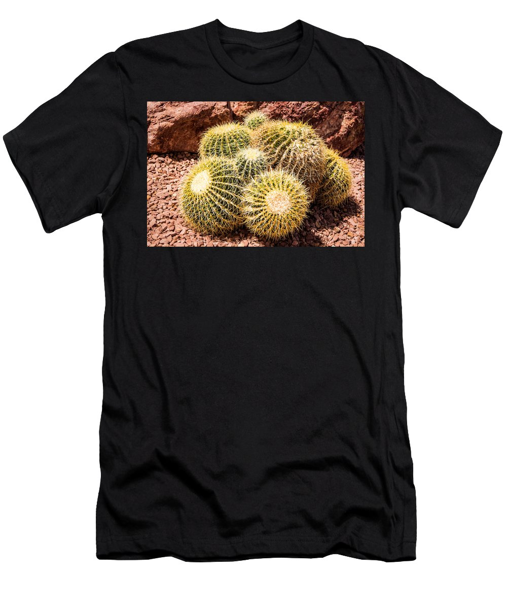 California Barrel Cactus Men's T-Shirt (Athletic Fit) featuring the photograph California Barrel Cactus by Onyonet Photo Studios