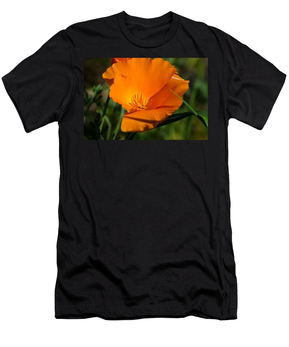 Gardening Men's T-Shirt (Athletic Fit) featuring the photograph California Poppy by Tikvah's Hope