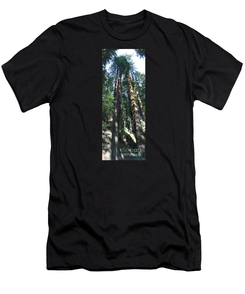 Sequoia Men's T-Shirt (Athletic Fit) featuring the photograph California Redwood by Christiane Schulze Art And Photography