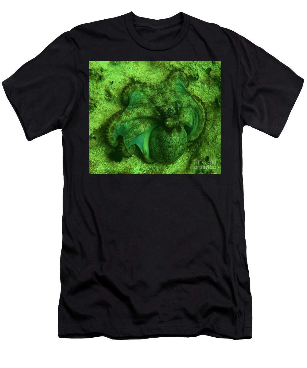 Common Octopus Men's T-Shirt (Athletic Fit) featuring the photograph Camoflauged Octopus by Adam Jewell