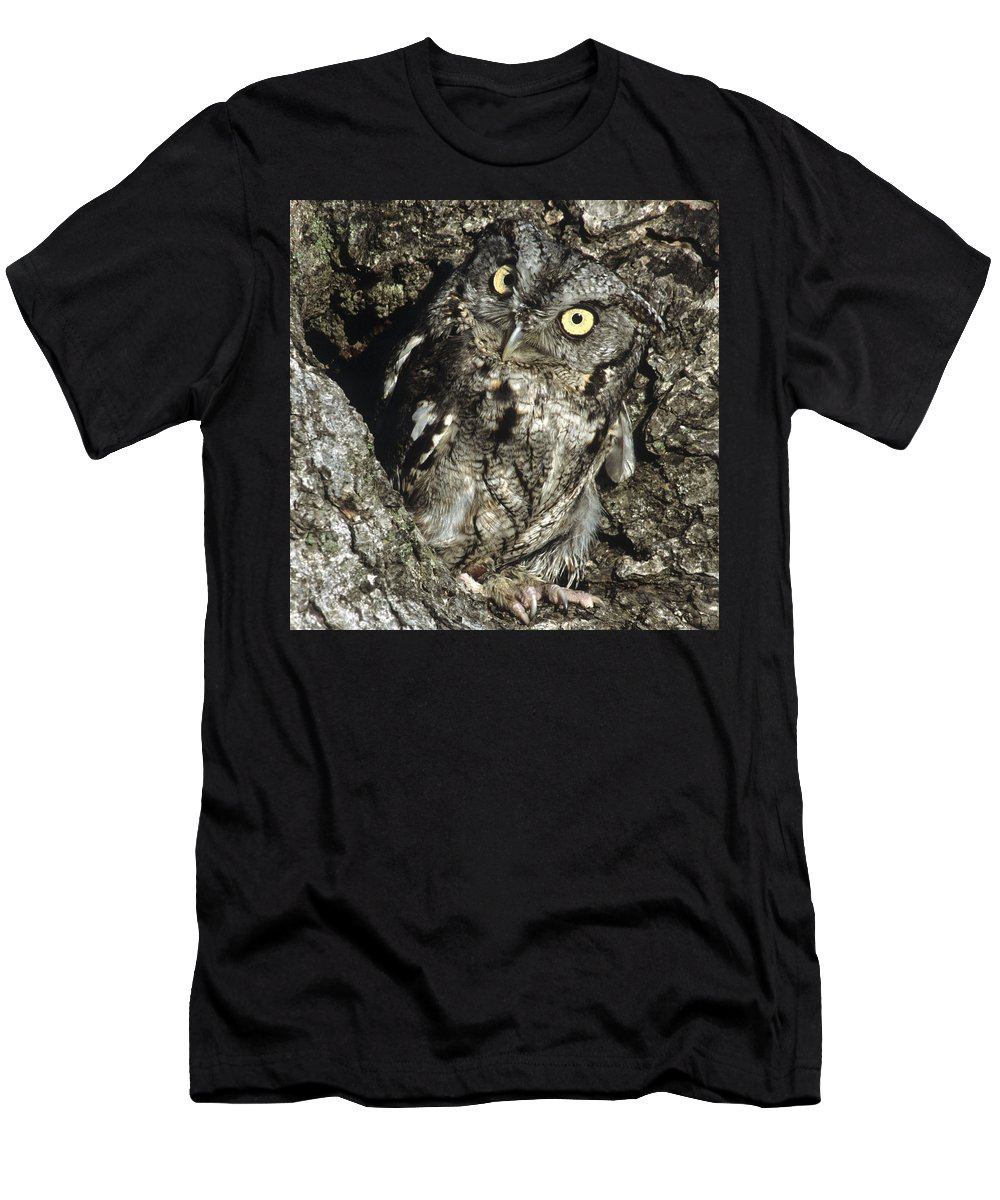 Owl Men's T-Shirt (Athletic Fit) featuring the photograph Camouflaged Screech Owl by Larry Allan