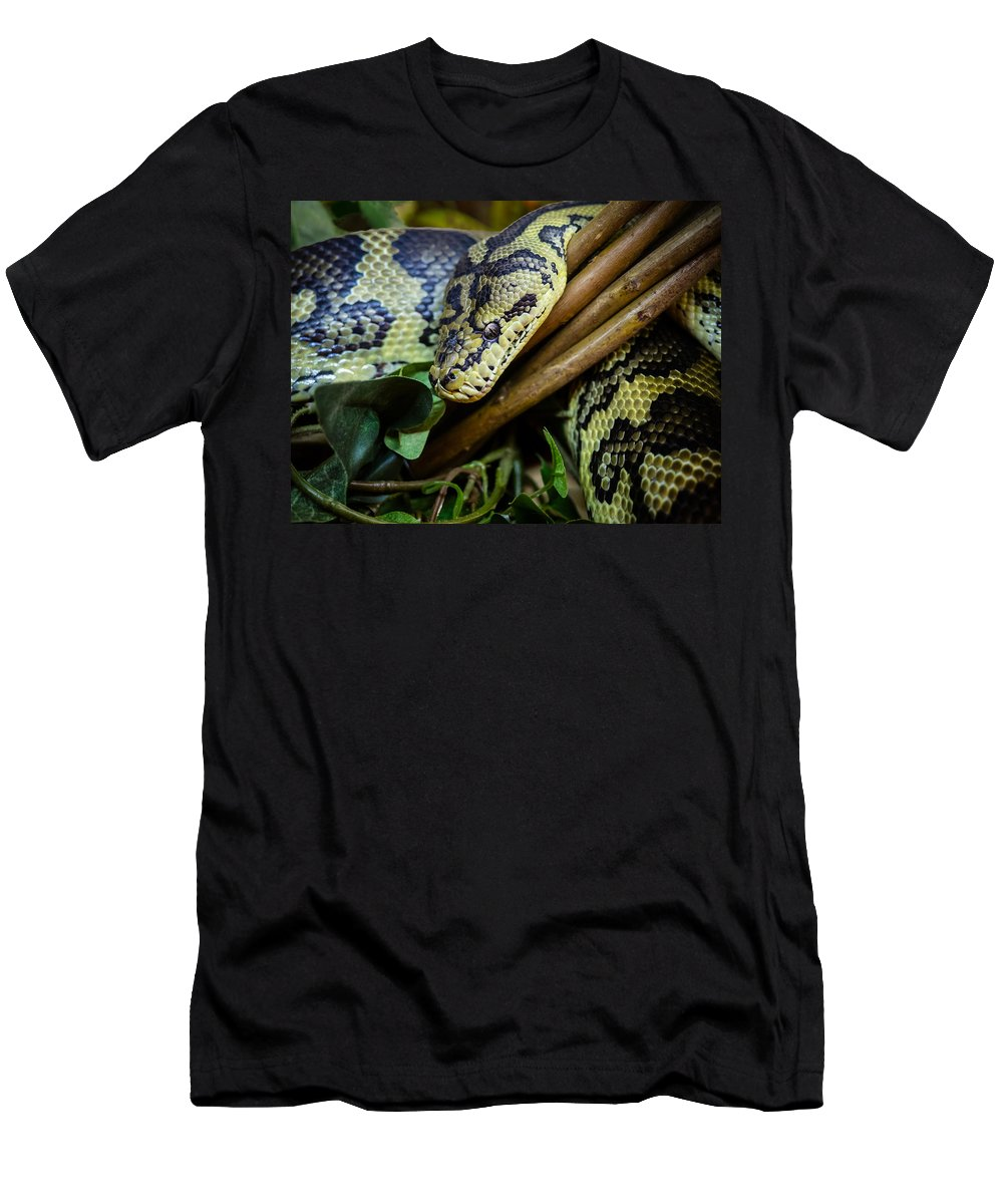 Canvas Men's T-Shirt (Athletic Fit) featuring the photograph Carpet Python by Mark Llewellyn