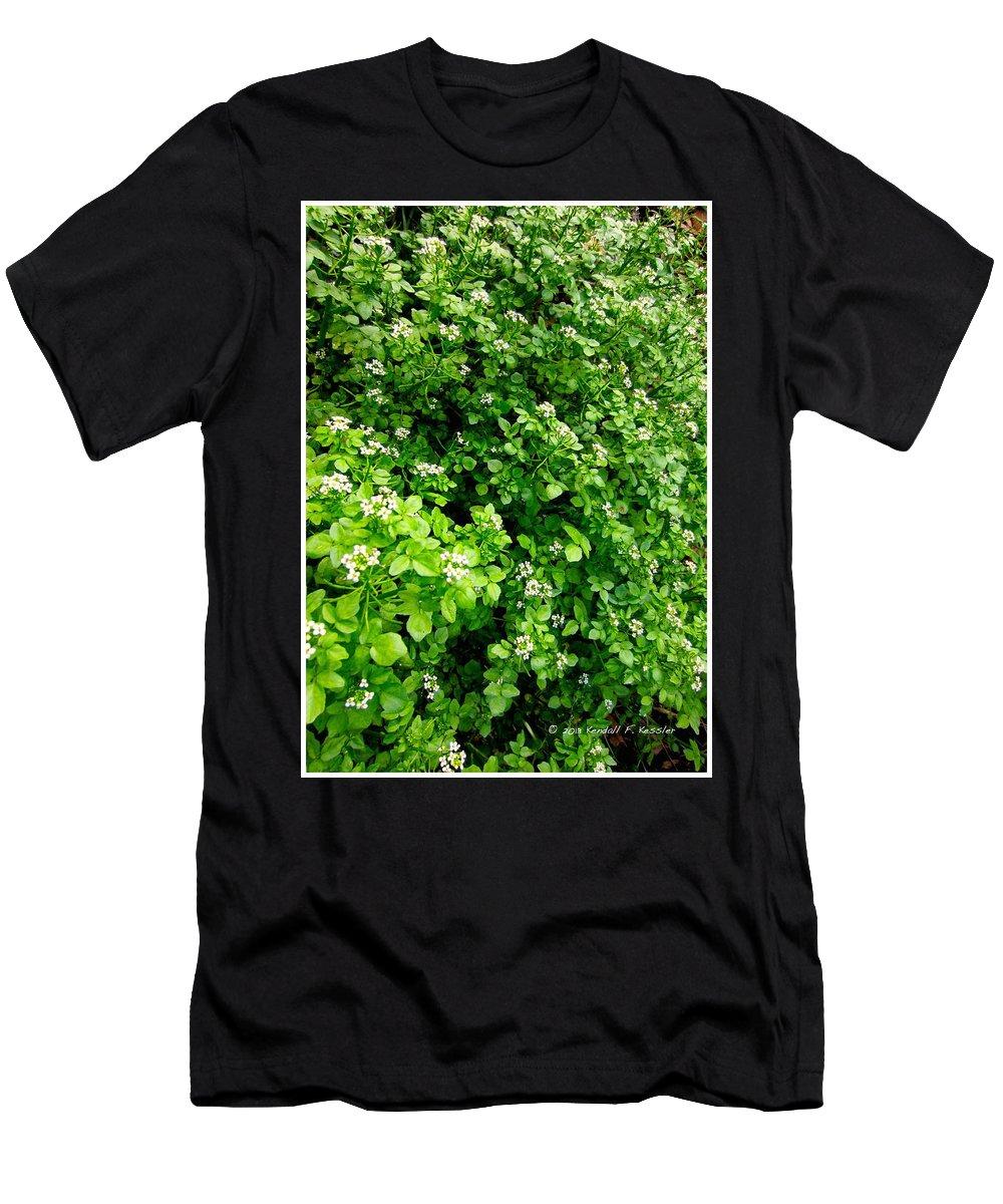 Fleabane Men's T-Shirt (Athletic Fit) featuring the photograph Cascading Fleabane by Kendall Kessler