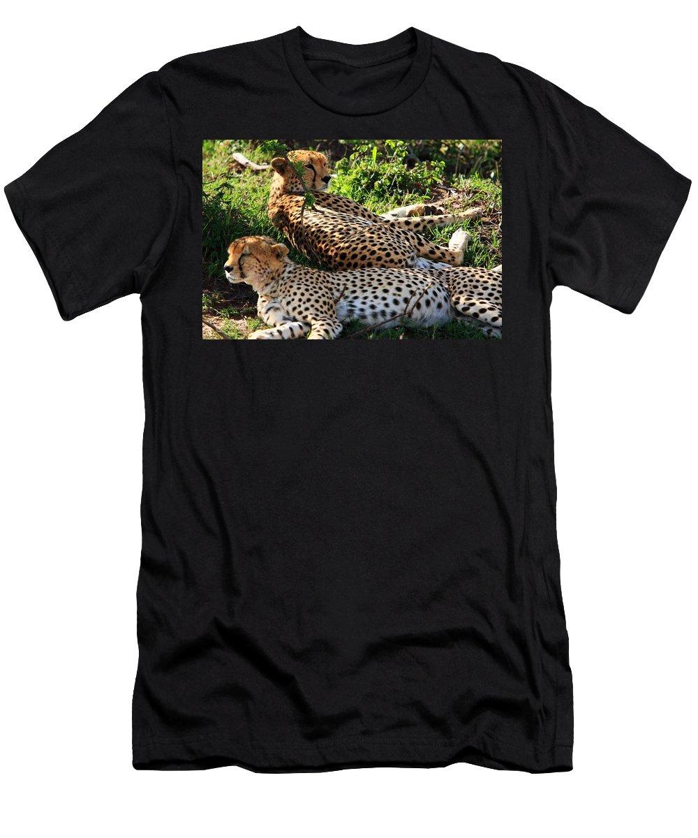 Cheetah Men's T-Shirt (Athletic Fit) featuring the photograph Cheetah - Masai Mara - Kenya by Aidan Moran