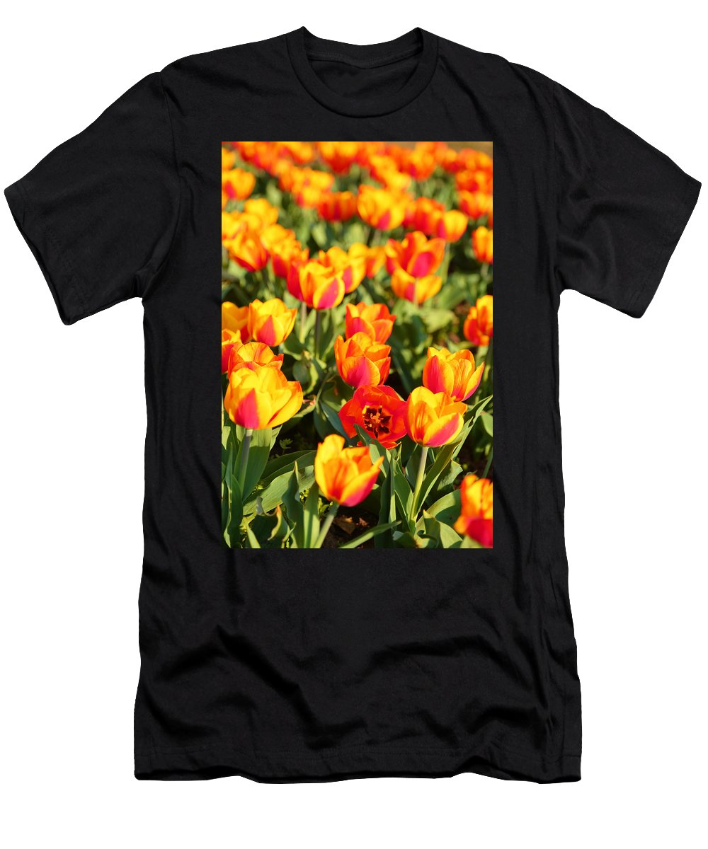 Architectural Men's T-Shirt (Athletic Fit) featuring the photograph Cherry Blossoms 2013 - 032 by Metro DC Photography