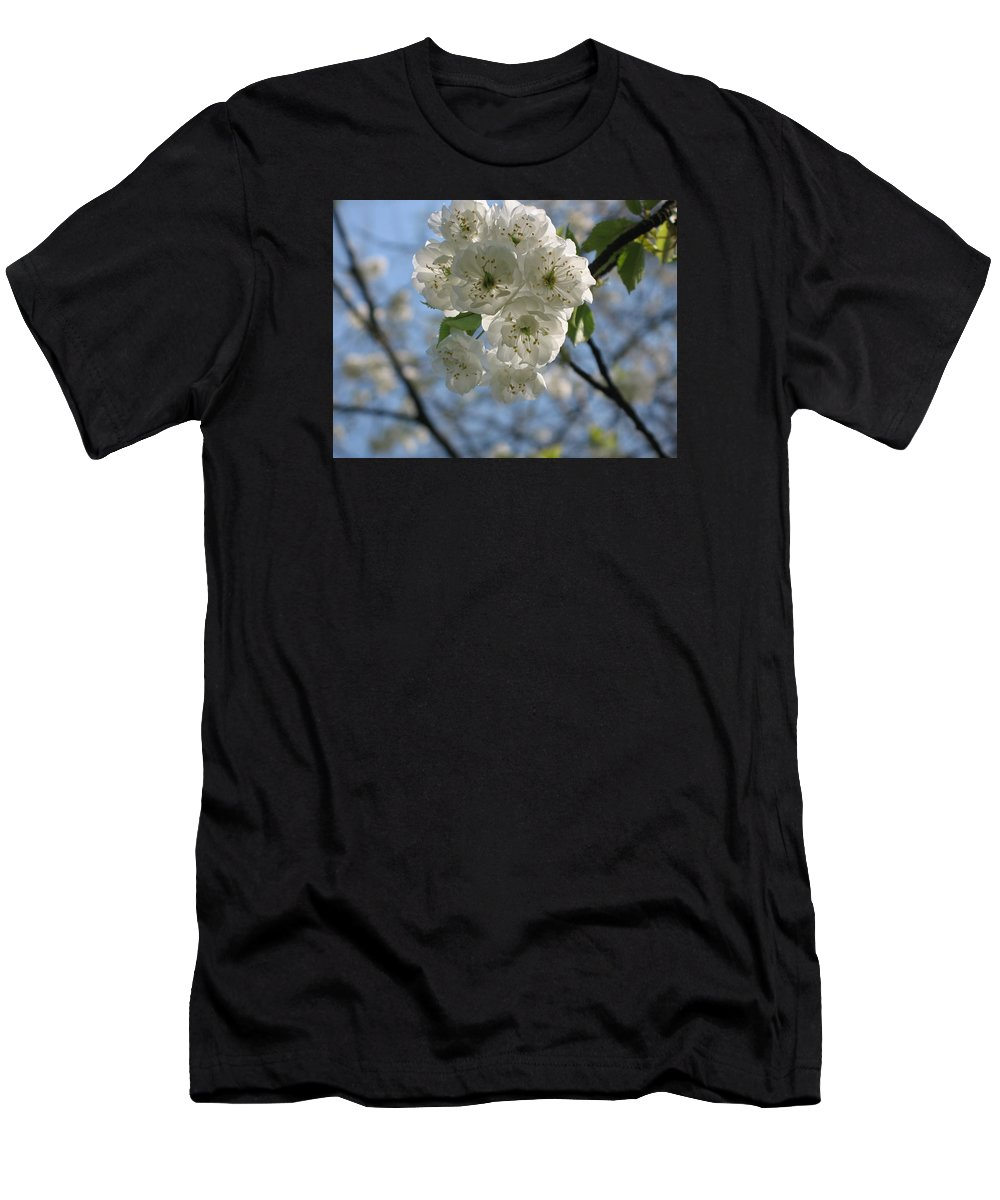 Cherry Men's T-Shirt (Athletic Fit) featuring the photograph Cherry Tree Petals by Christiane Schulze Art And Photography