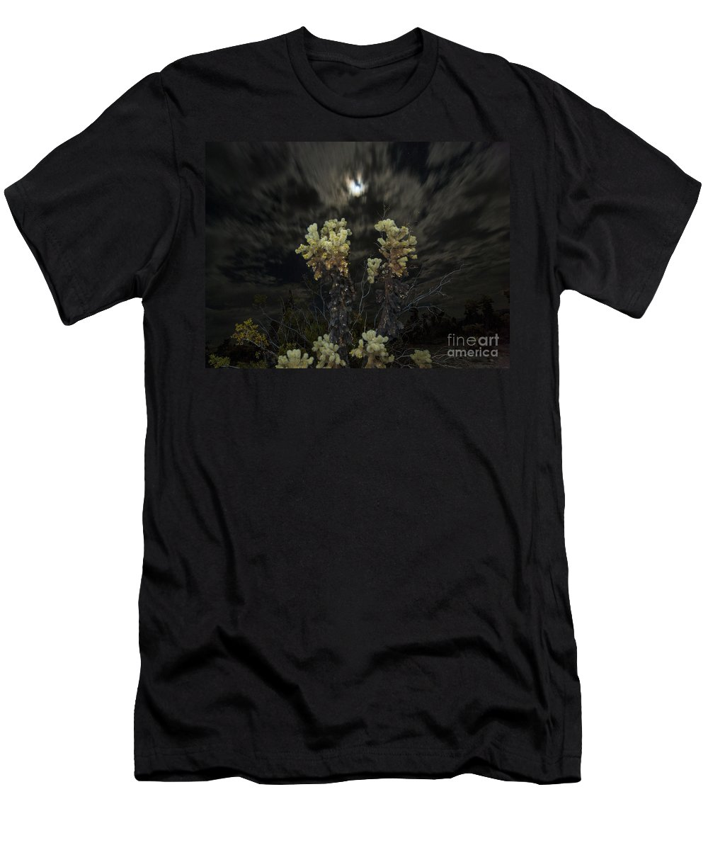 Cholla Cactus Men's T-Shirt (Athletic Fit) featuring the photograph Cholla Light - Joshua Tree National Park by Jamie Pham