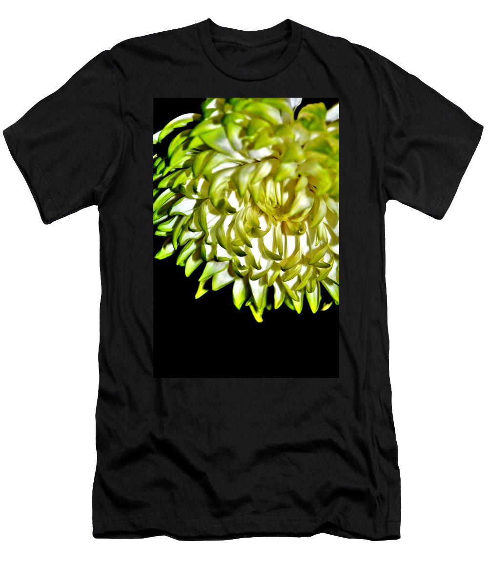 Chrysanthemum Men's T-Shirt (Athletic Fit) featuring the photograph Chrysanthemum by Michelle McPhillips